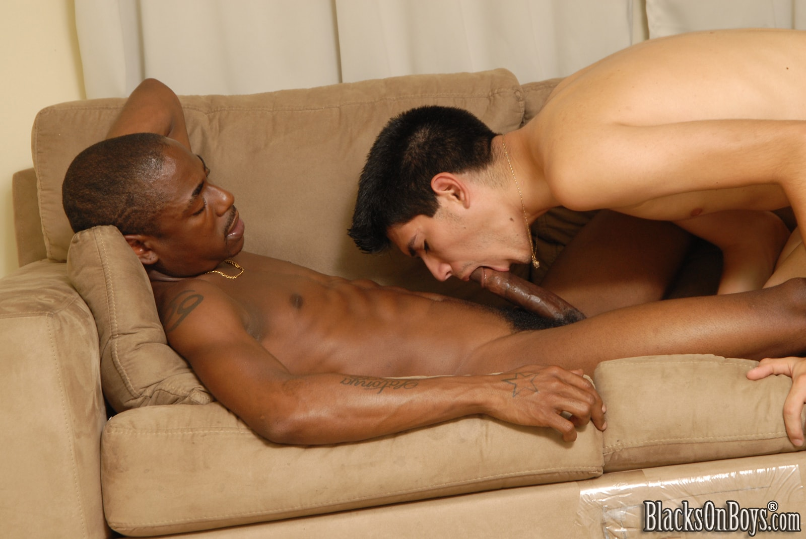 Dogfart Men '- Blacks On Boys' starring Bradley Wood (Photo 19)